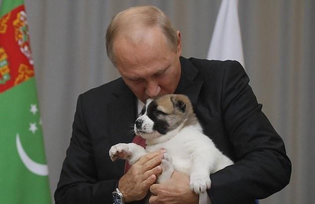 تصاویر | سگی که پوتین به عنوان هدیه تولد دریافت کرد