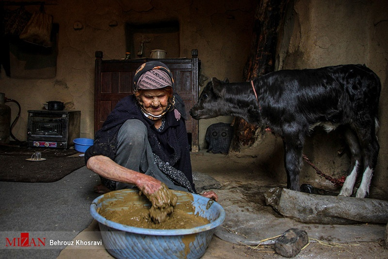 تصاویر | روزگار زنان در روستاهای مازندران