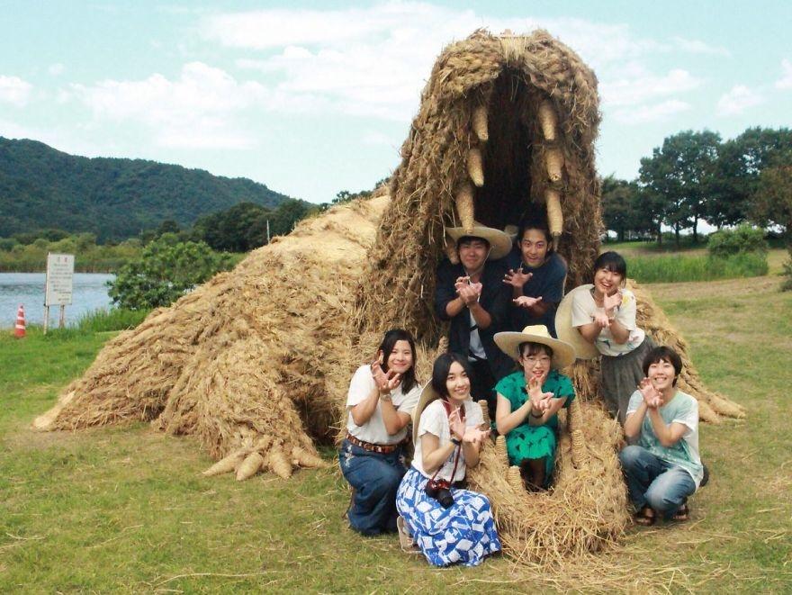 تصاویر   ساخت مجسمههای غولپیکر ژاپنی با نی برنج