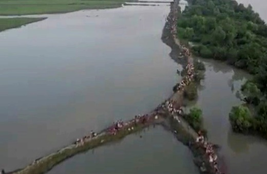 فیلم | نمای هوایی از فرار مسلمانان روهینگیایی به بنگلادش