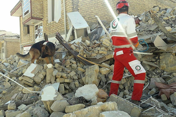 فیلم | آواربرداری و بیرون کشیدن اجساد از زیر آوار زلزله | صحنه بیقراری پدری برای فرزند و برادر