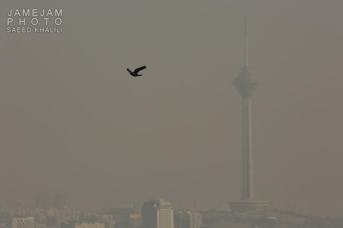 هوای تهران برای چهاردهمین روز ناسالم ماند/ غلظت آلایندهها کاهش مییابد