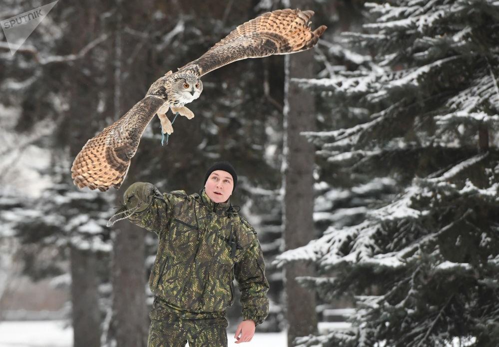 تصاویر | پرندههایی که برای محافظت از کاخ کرملین آموزش میبینند