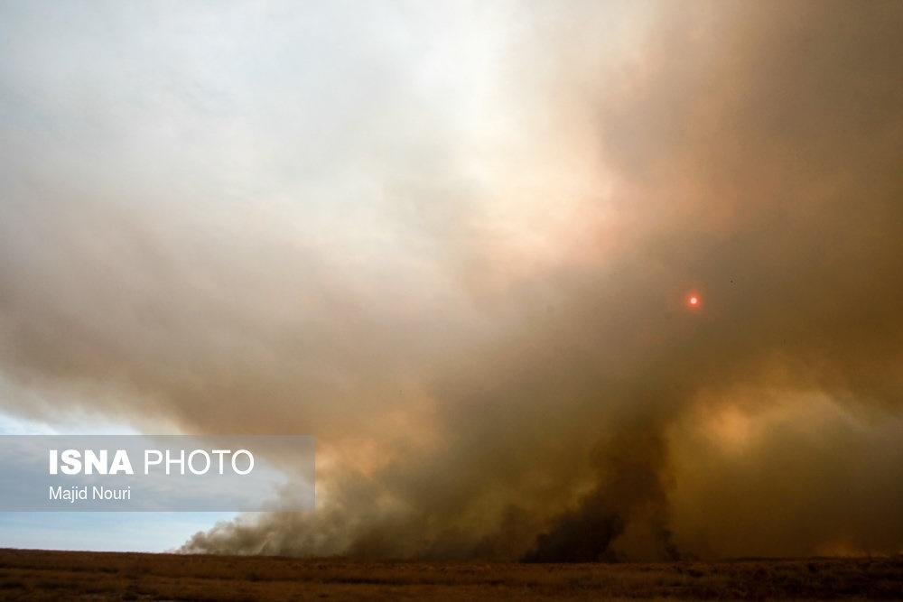 تصاویر | آتشسوزی در تالاب میقان اراک
