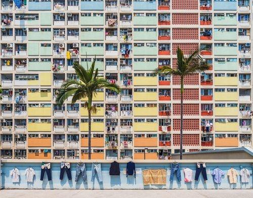 عکس | مجتمع رنگین کمان در عکس روز نشنال جئوگرافیک