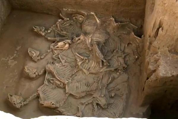 فیلم   کشف مقبرههای باستانی در شمال غربی چین