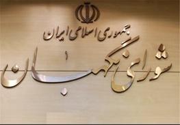 سید محمد هاشمی,ستاد انتخابات کشور,اصلاح قانون انتخابات,شورای نگهبان