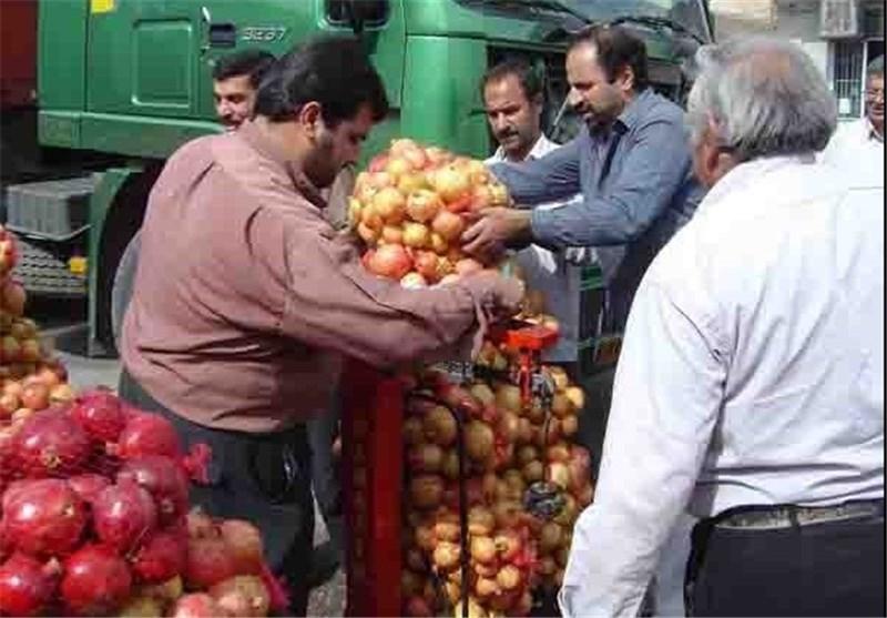 استان اردبیل برای تامین محصولات کشاورزی ولگاگراد روسیه آمادگی دارد