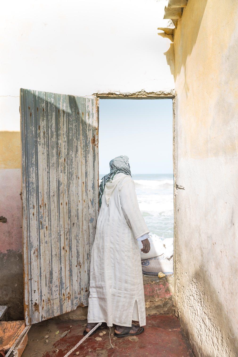 تصاویر | برگزیدگان چهاردهمین دوره مسابقه عکاسی استیمسونیان