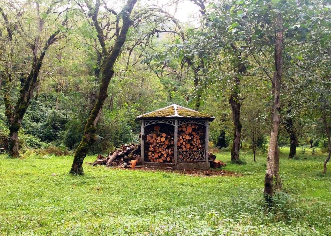 تصاویر | کلبه های جنگلی چالدره در حوالی «دوهزار»