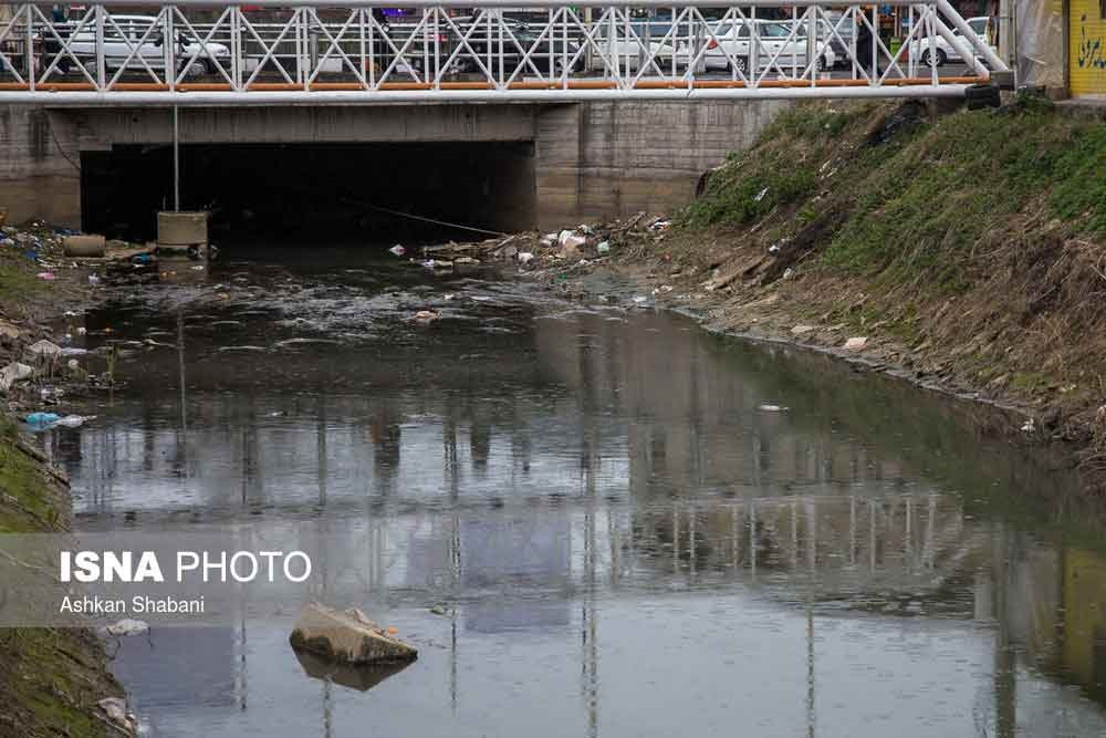 تصاویر   این فقط یکی از رودخانههای آلوده گیلان است!