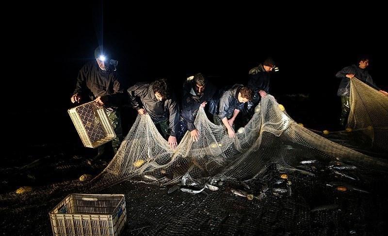 تصاویر   پایان فصل صید ماهی در میانکاله