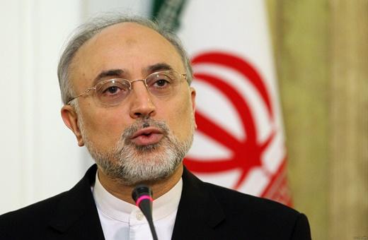 صالحی: اتحادیه اروپا 5 میلیون دلار برای افزایش ایمنی هستهای در کشور اختصاص داده است