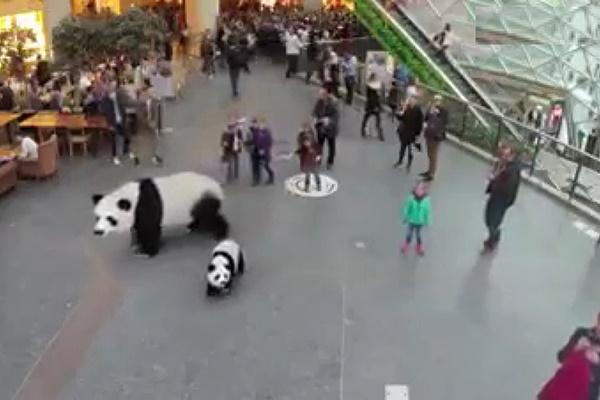 فیلم | باغوحش ۷ بعدی در ژاپن