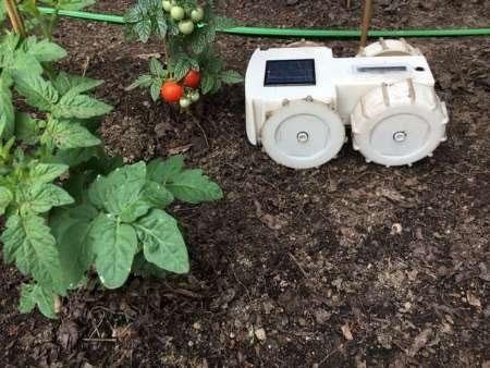 این ربات از باغچه و مزرعهتان نگهداری میکند