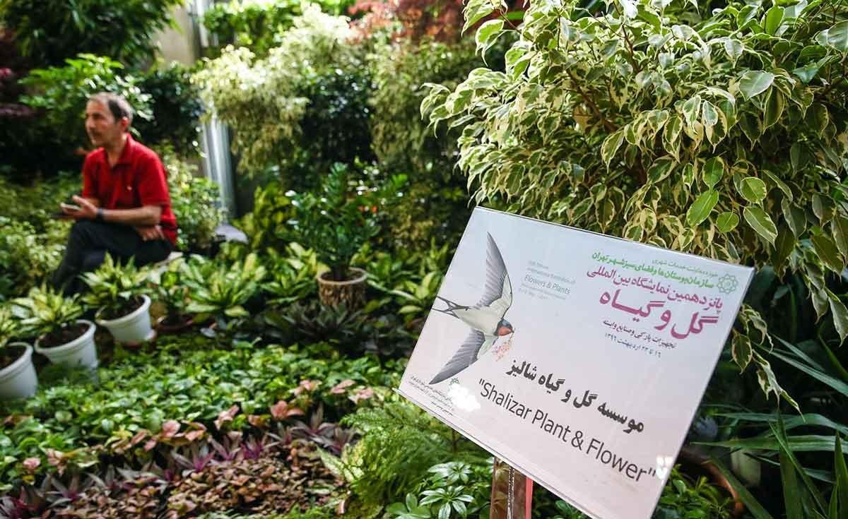 تصاویر   زیباییهای خاص یک نمایشگاه فصلی در تهران