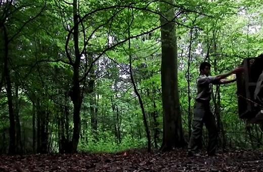 فیلم | لحظه آزادی پلنگ مازندران در زیستگاهش