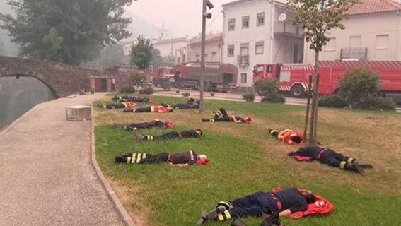 تصاویر جدید از آتشسوزی مرگبار در جنگلهای پرتغال