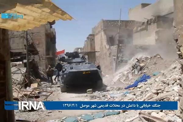 فیلم | جنگ خیابانی با داعش در محلات قدیمی موصل