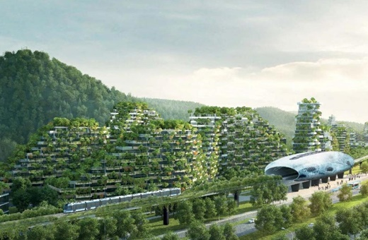 ساخت اولین شهر جنگلی با ۴۰هزار درخت در چین/ راهکاری برای مبارزه با آلودگی هوا