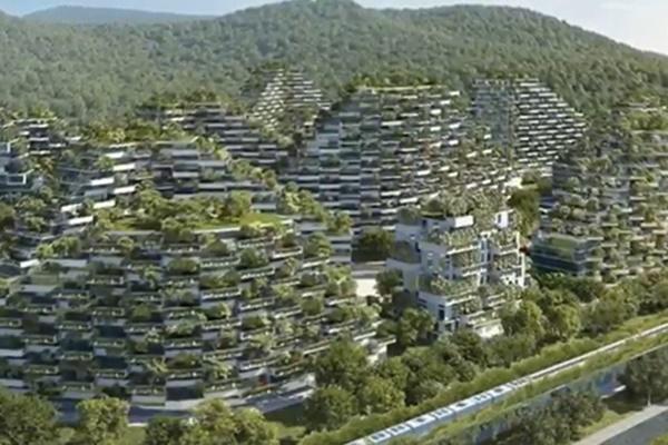 فیلم | شهر جنگلی؛ روش متفاوت چینیها برای مقابله با آلودگی هوا