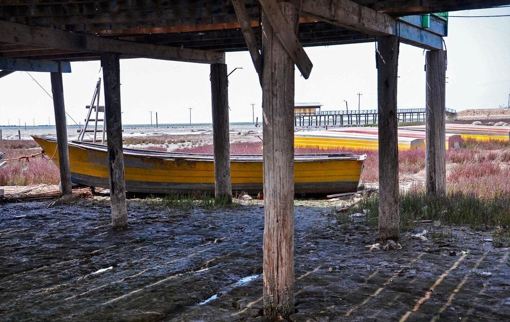 تصاویر | وضعیت بحرانی خلیج گرگان