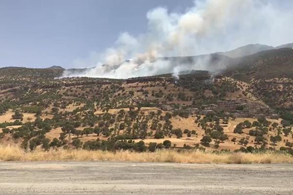 فیلم | آتشسوزی جنگلهای زاگرس