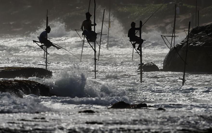 عکس | عجیبترین روش صید ماهی در سریلانکا