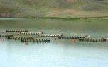 ۲۰۰ تن از ماهیهای مجتمع پرورش ماهی سد حوضیان تلف شد