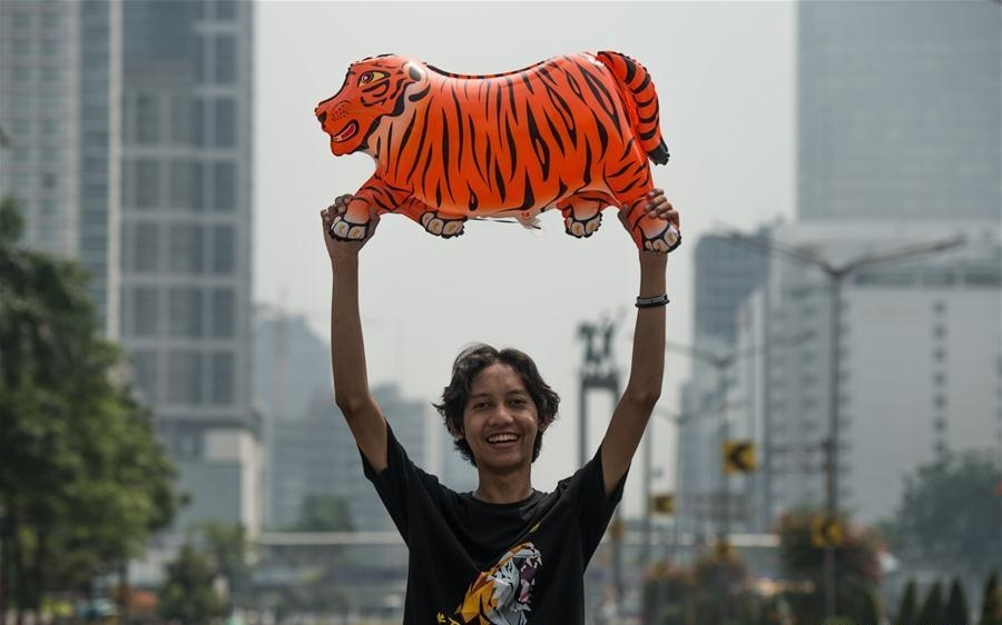 تصاویر | روز جهانی ببر در جاکارتای اندونزی