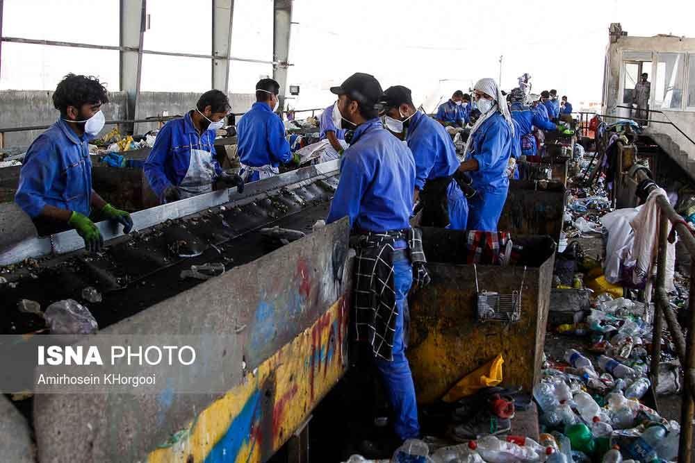 تصاویر   روز و شب در میان زبالهها   نگاهی به یک شغل دشوار