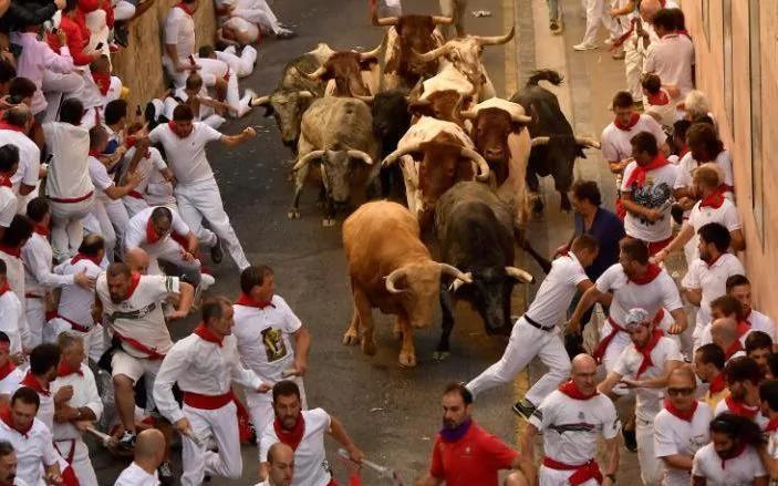 تصاویر | دعوای خیابانی گاوها و انسانها | کار ۳ نفر به بیمارستان کشید