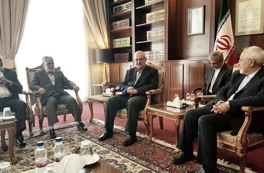 دیدار اعضای فراکسیون وفاداری به مقاومت مجلس لبنان با ظریف