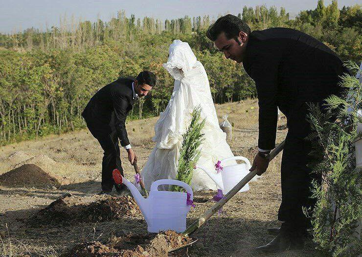 عکس | مهریه عجیب، عروس و داماد را به بیابان کشاند