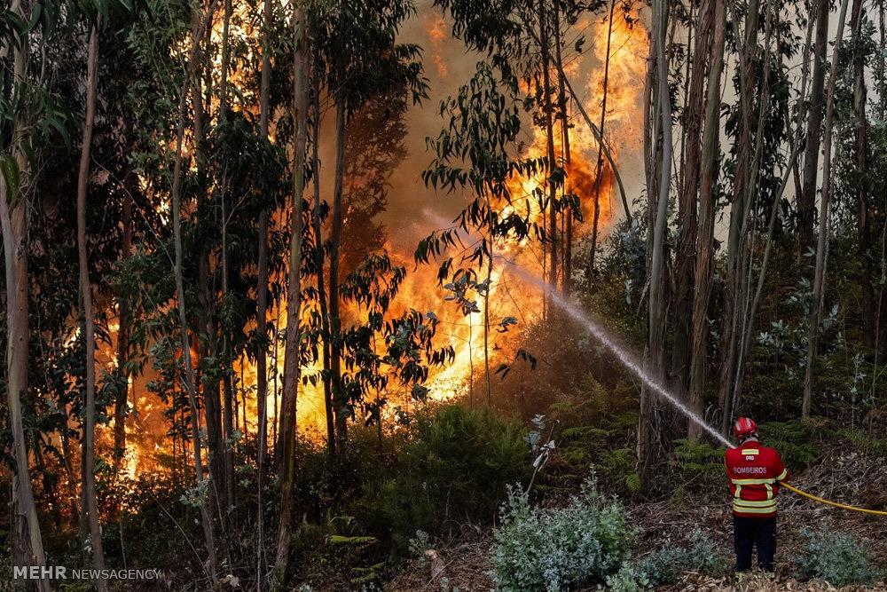 تصاویر   گرمای شدید هوا و آتشسوزی گسترده در جنوب اروپا