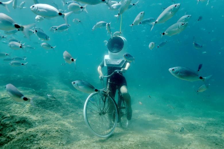 تصاویر | تجربه دنیای زیبای زیر آب در کرواسی